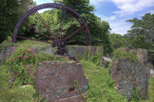 Waterwheel Tobago