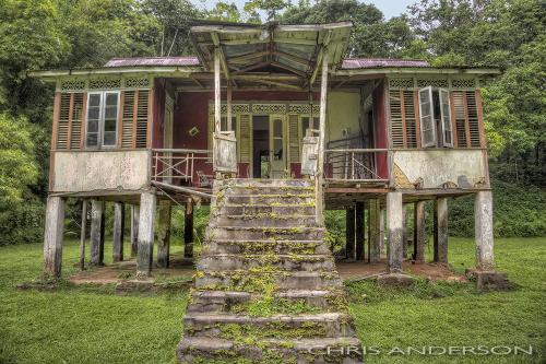 Caura House
