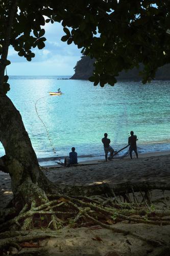 Pulling Seine Tobago