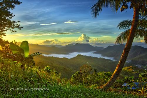 Our Trini Land