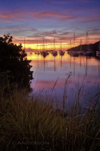 Sailing Cove