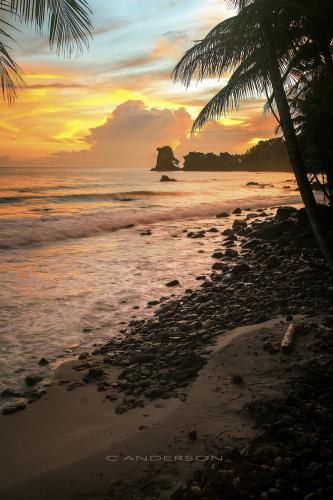 Tacarib Sunrise