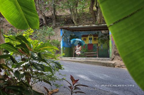 Bus Stop Tobago