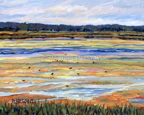 Salt Marsh, Plum Island