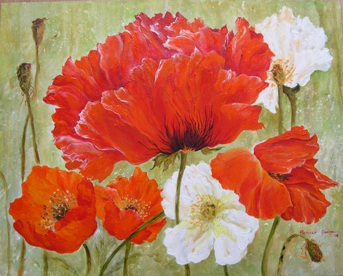 Red & White Poppies
