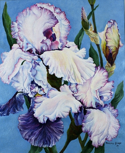 Iris ll by Priscilla George
