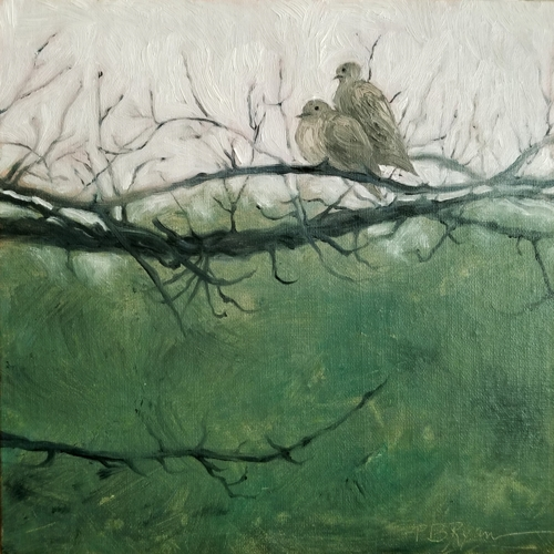 Mourning Doves, Winter