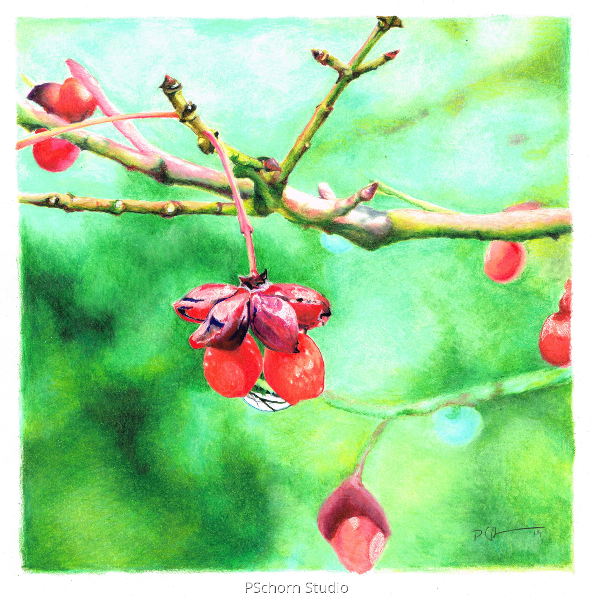 Winter Berries (large view)