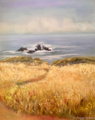 Golden Grass at Sea Ranch