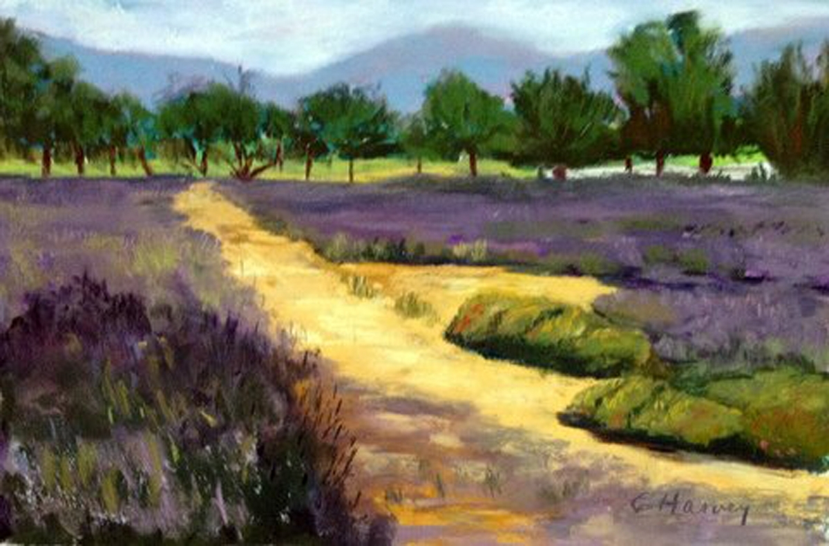 "Cathy Harvey - ""Los Olivos Promise"" - Honorable Mention (large view)"