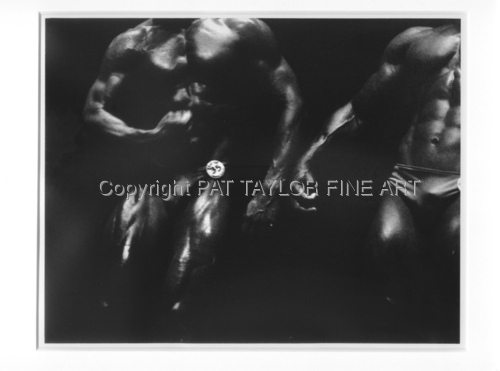 two male bodybuilders (large view)
