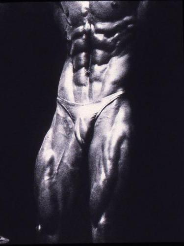 Bodybuilder Abs: photographic original