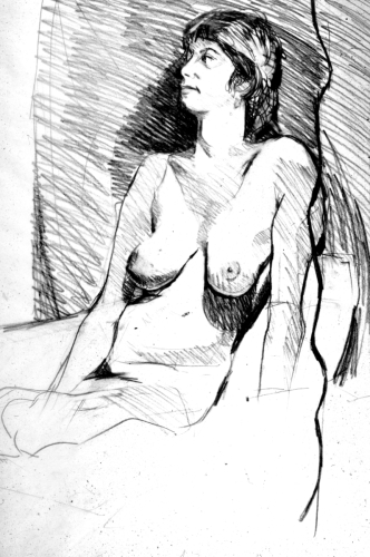 Female Nude, Electrical Cord