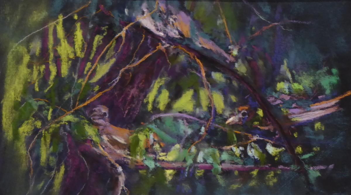 Sparrow Bush (large view)
