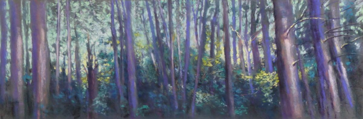 Woods At Pound Ridge (large view)