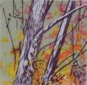 Two Trees Autumn (thumbnail)