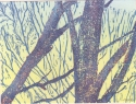 Branches 2 (thumbnail)