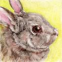 Bunny (thumbnail)