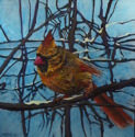 Female Cardinal in Winter (thumbnail)
