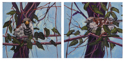 Diptych: Two Sparrows