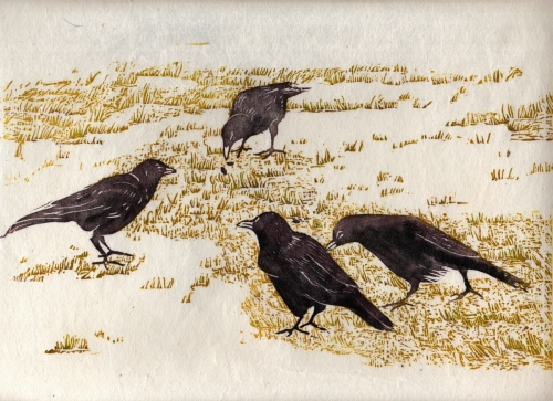 Four Crows on Grass (large view)