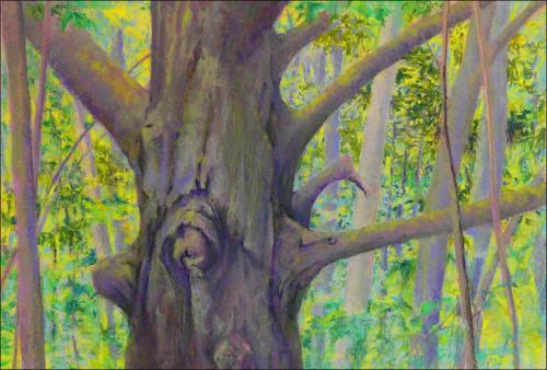 Gnarly Tree by Pamela Garfield
