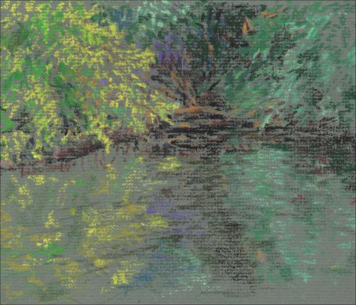 Pond shore study