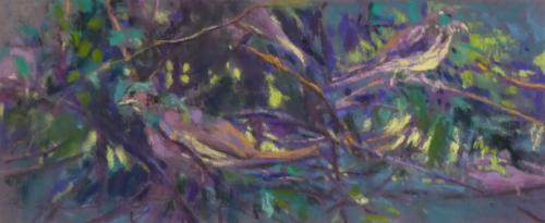 Sparrow Bush 2