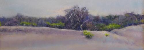 Dunes at Cape May