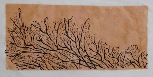 Branches on Orange (thumbnail)
