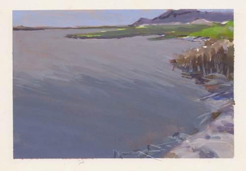Estuary (SY River)