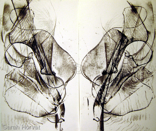 Flutter by Sarah Horvat