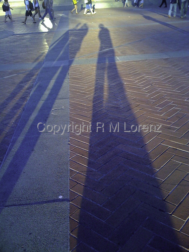 Campus Shadows