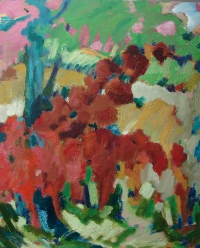 Poppyfields of Umbria