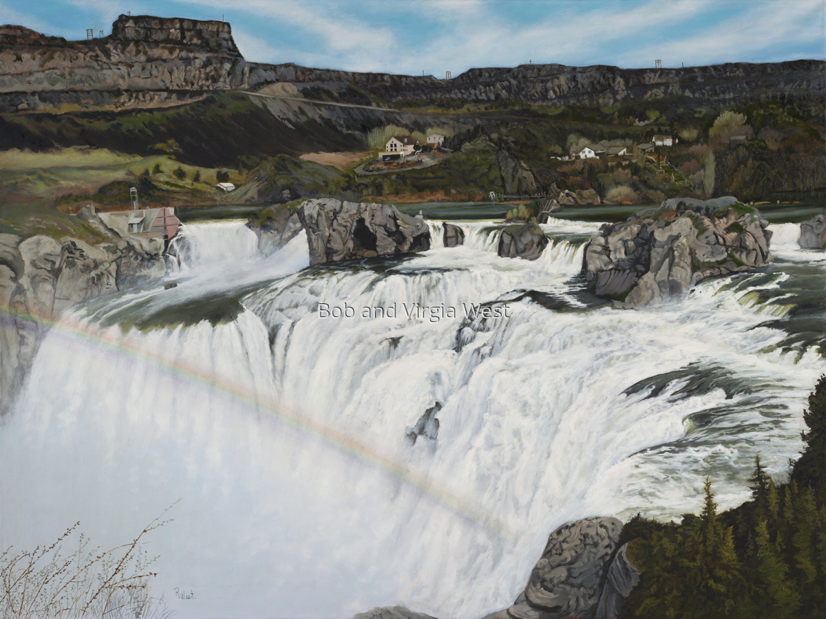 Shoshone Falls 2017 (large view)
