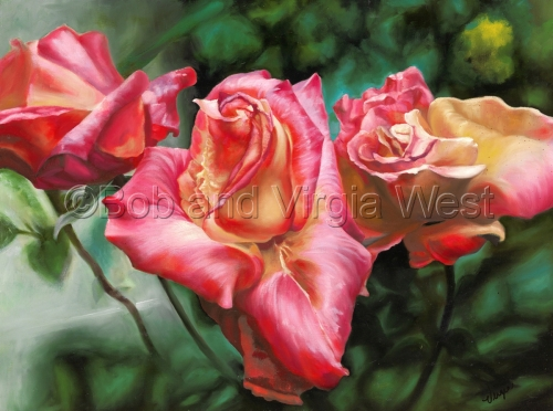 Patsy's Garden-Pink Rose by Rainbow Art--Virgia and Robert West