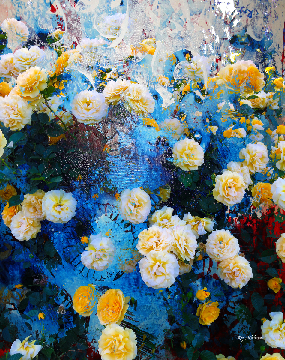 Blue Garden (large view)