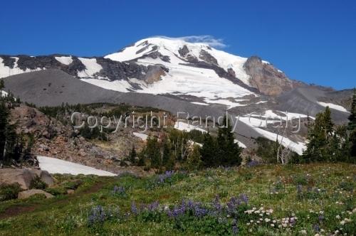 Mt. Adams 0233