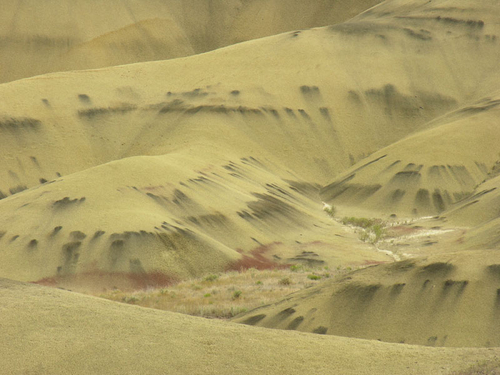 Painted Hills 3775