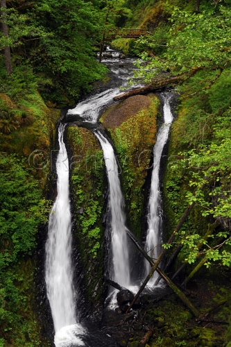 Triple Falls - 3719 - 051913