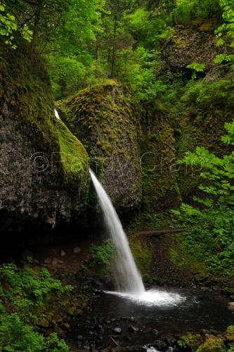 Ponytail Falls - 3606 - 051913