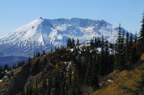 Mt St Helens_9455_101913