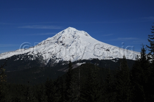 Mt Hood from high on Cast Creek Trail_8862_100513