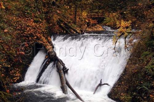 Lower North Falls_5567_110212