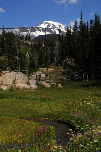 Mt Adams & Crooked Creek_1593_080413