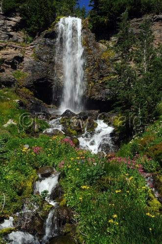 Crooked Creek Falls_5988_081813