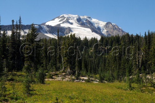 Mt Adams from Bird Creek Meadows_6185_081813