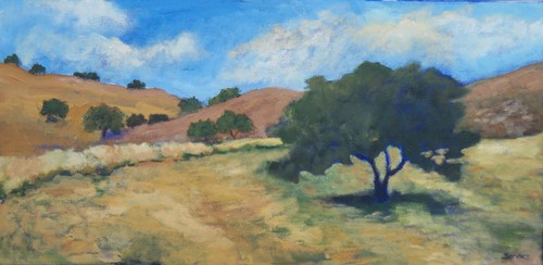 Figueroa Mountain Splendor by Rosemary Bandes