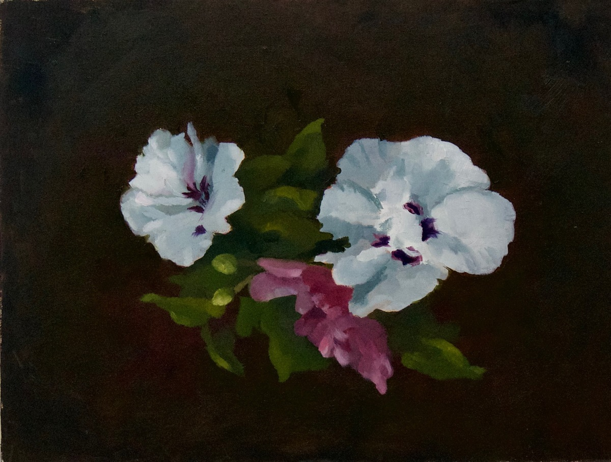 """Rose of Sharon"" (large view)"