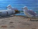 Gulls (thumbnail)